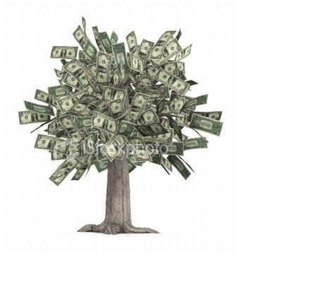 Réserve d'argent : comment choisir